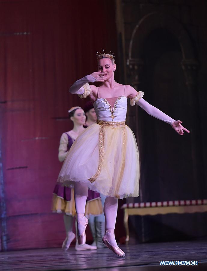"Russian ballet show ""Swan Lake"" performed in Frankfurt"