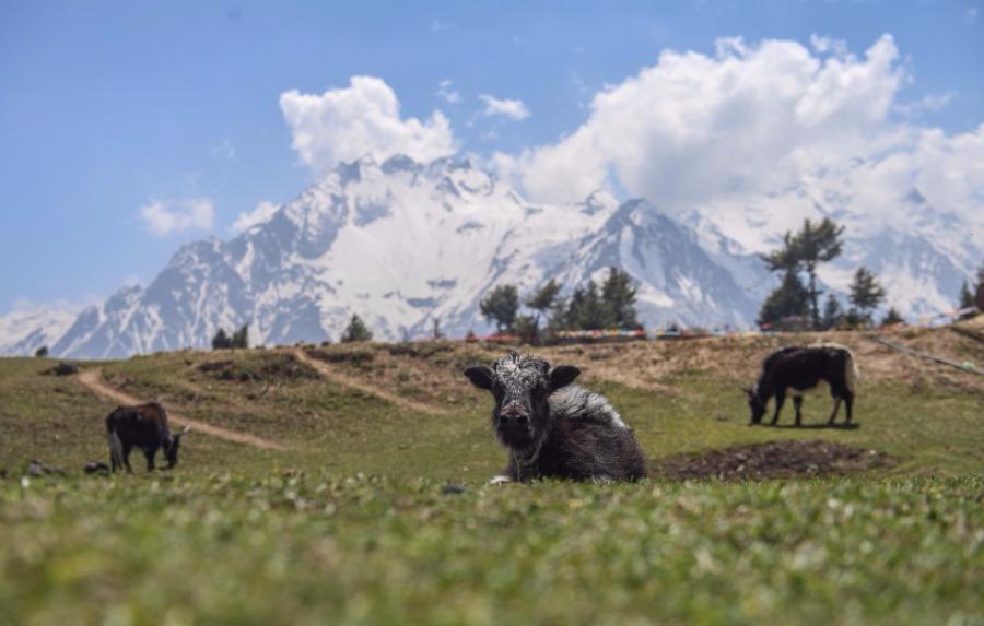 Tibet's Gyirong county creates a mesmerizing scene