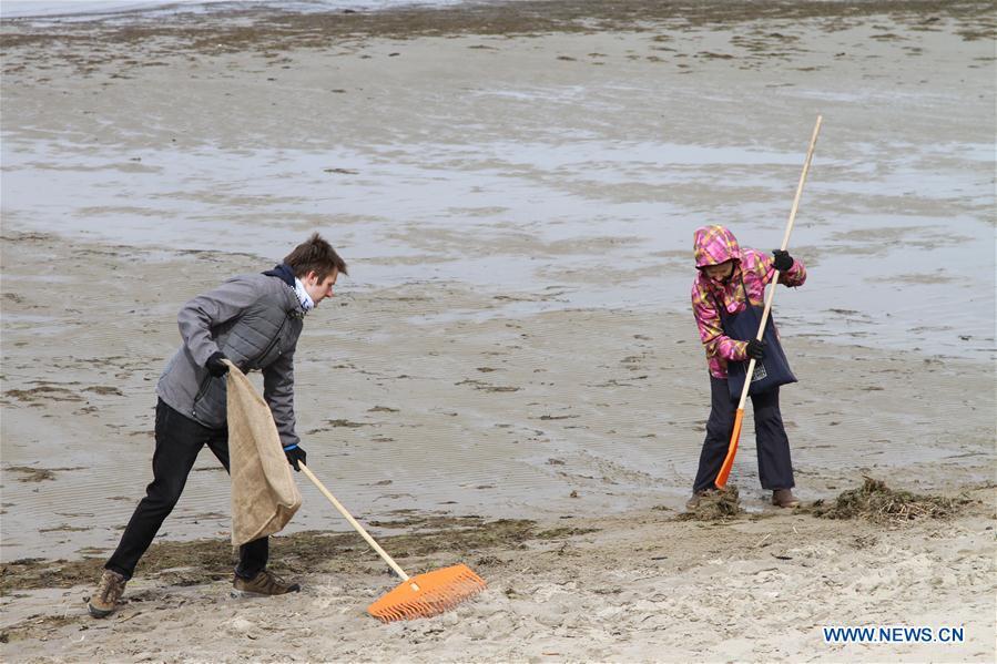 Clean Beach campaign held in Tallinn, Estonia