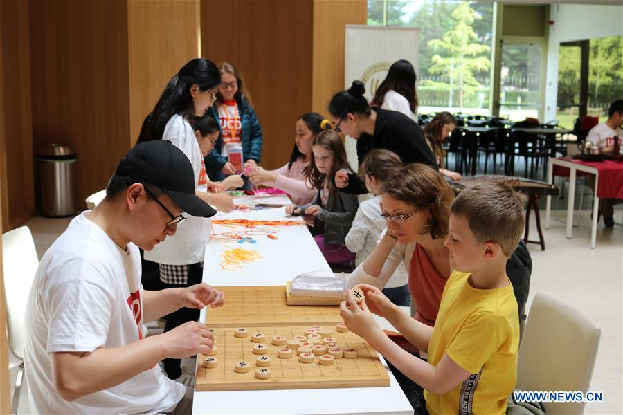 Visitors experience Chinese culture during UCD Festival in Ireland