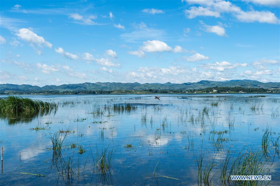 Caohai Lake in China's Guizhou recovers original size