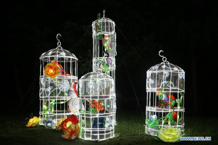 Zigong Lantern Exhibition held in Sibiu, Romania
