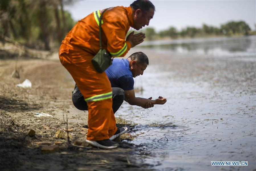 Pic story: forest ranger dedicated to populus euphratica forest restoration in Xinjiang