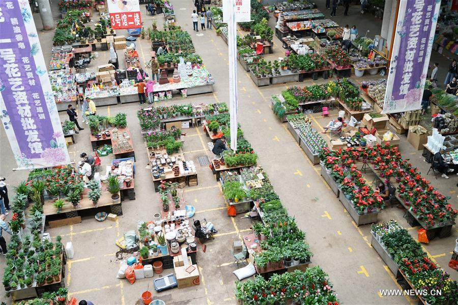 20th Kunming Int'l Flower Expo of China to be held in SW China