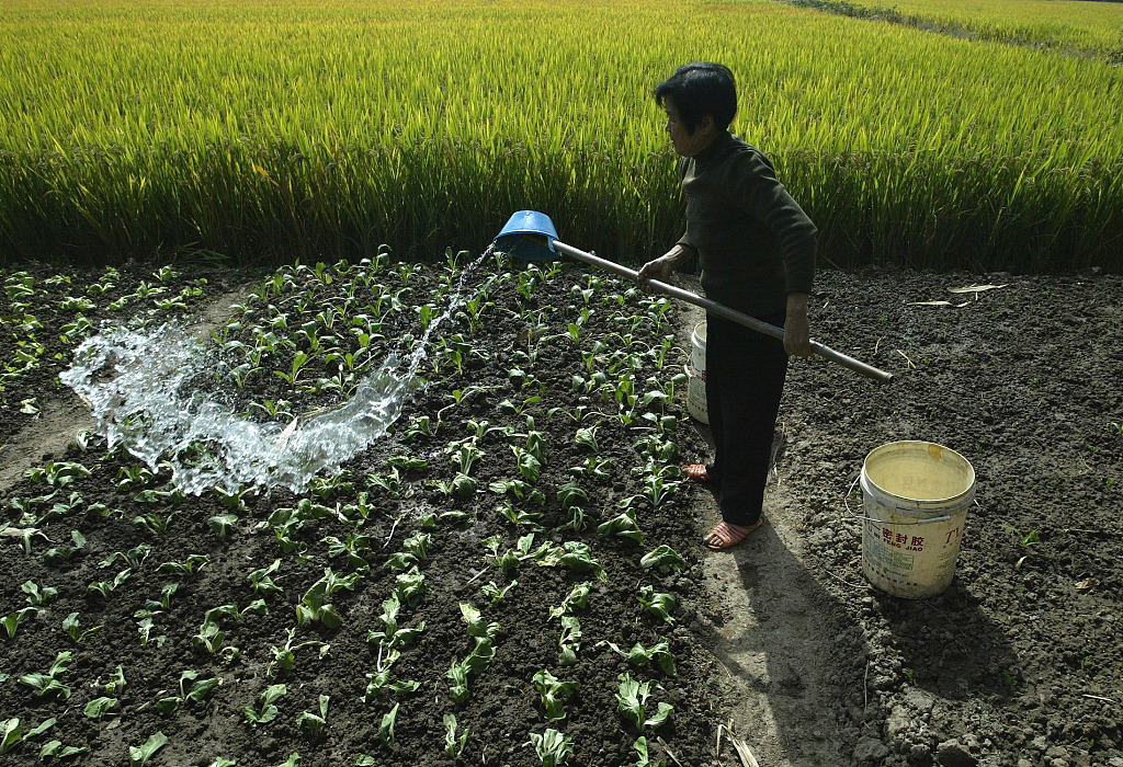 China unveils measures to relieve resource shortage in rural industries