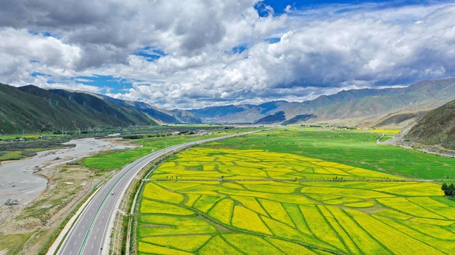 Summer scenery lines Tibetan highway