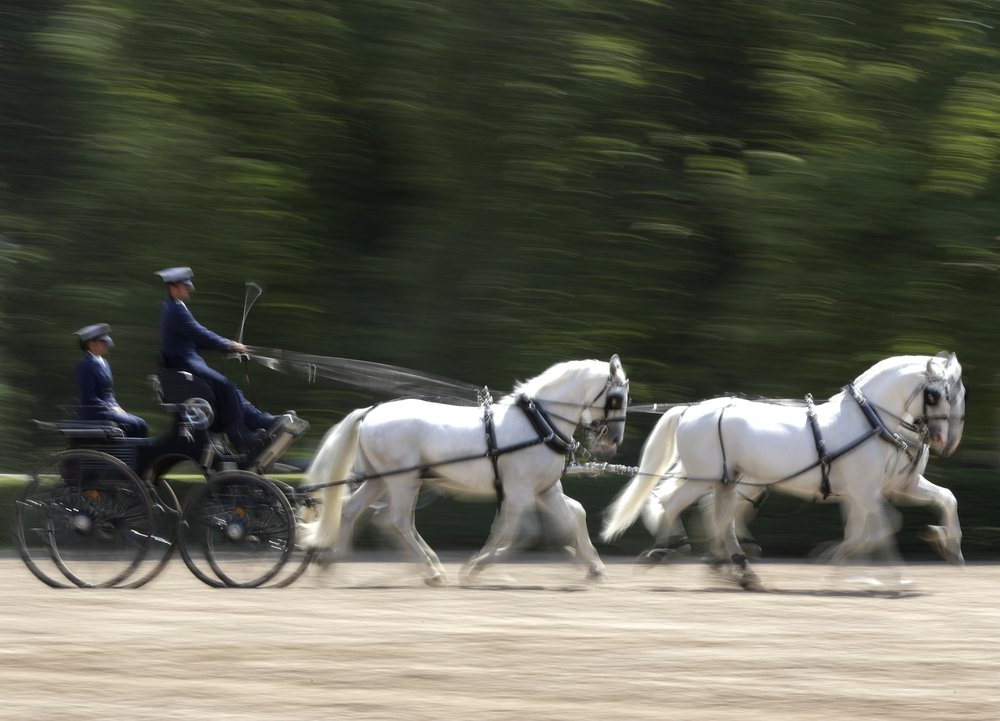 Czech stud farm makes UNESCO's World Heritage list