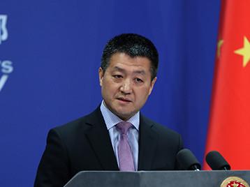 Foreign Ministry spokesman Lu Kang leaves posts