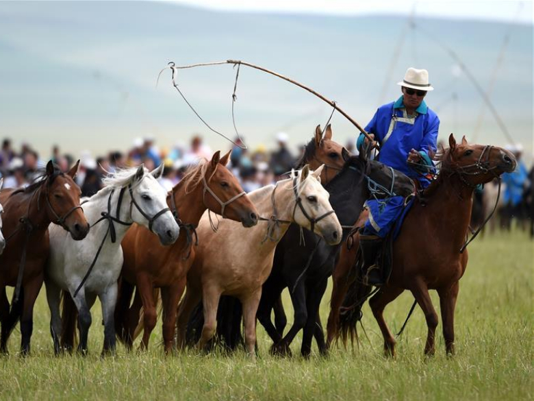 Equine culture event opens in north China's Inner Mongolia