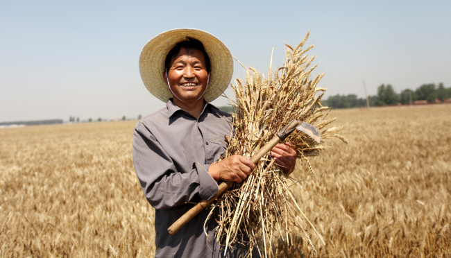 China to issue special bonds to vitalize rural areas