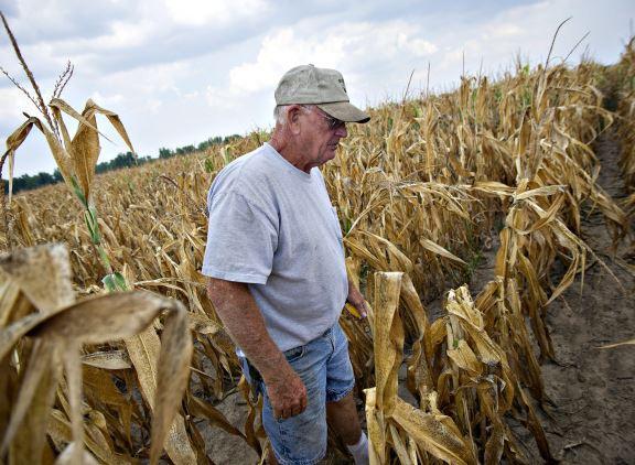 American Farm Bureau Federation urges resolution of trade disputes