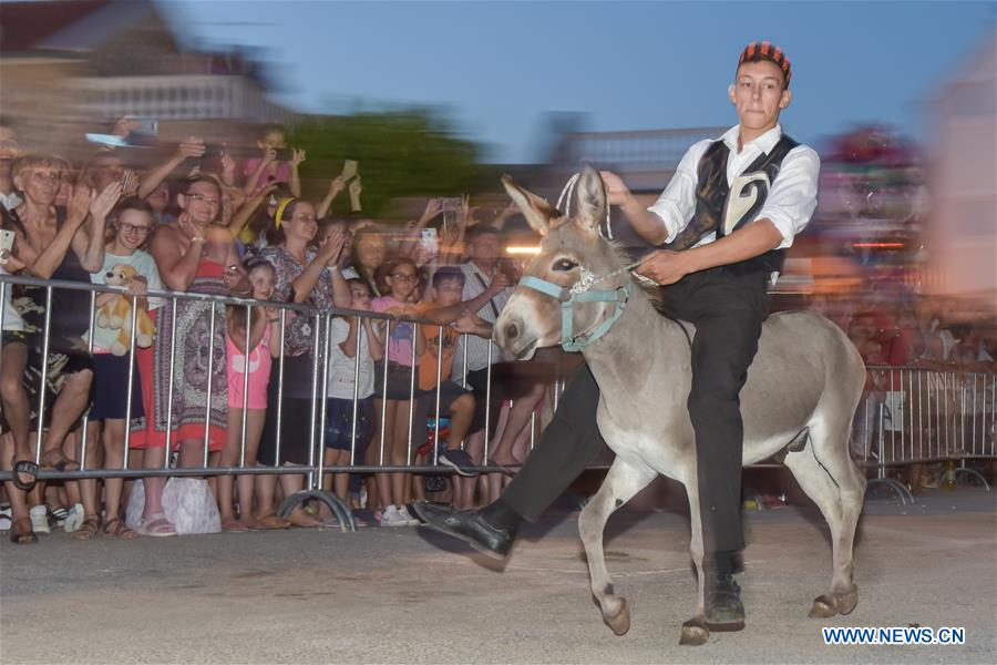 52nd traditional donkey race held in Croatia