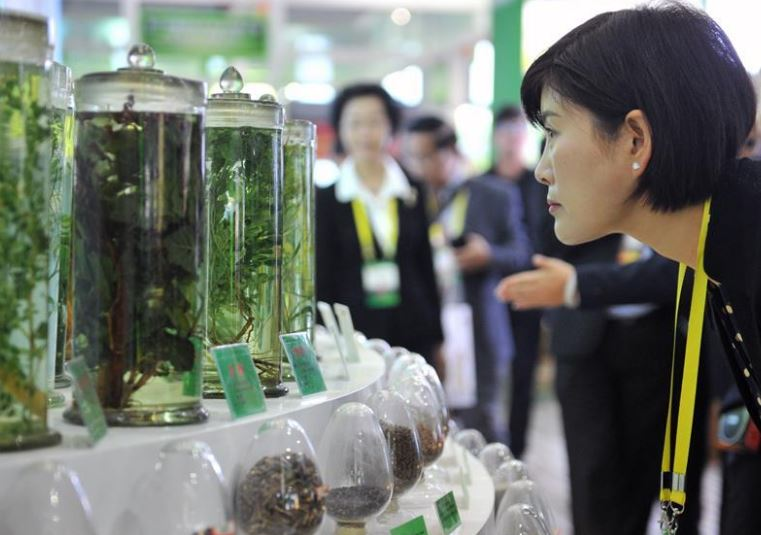 China to hold 2nd traditional Chinese medicine expo