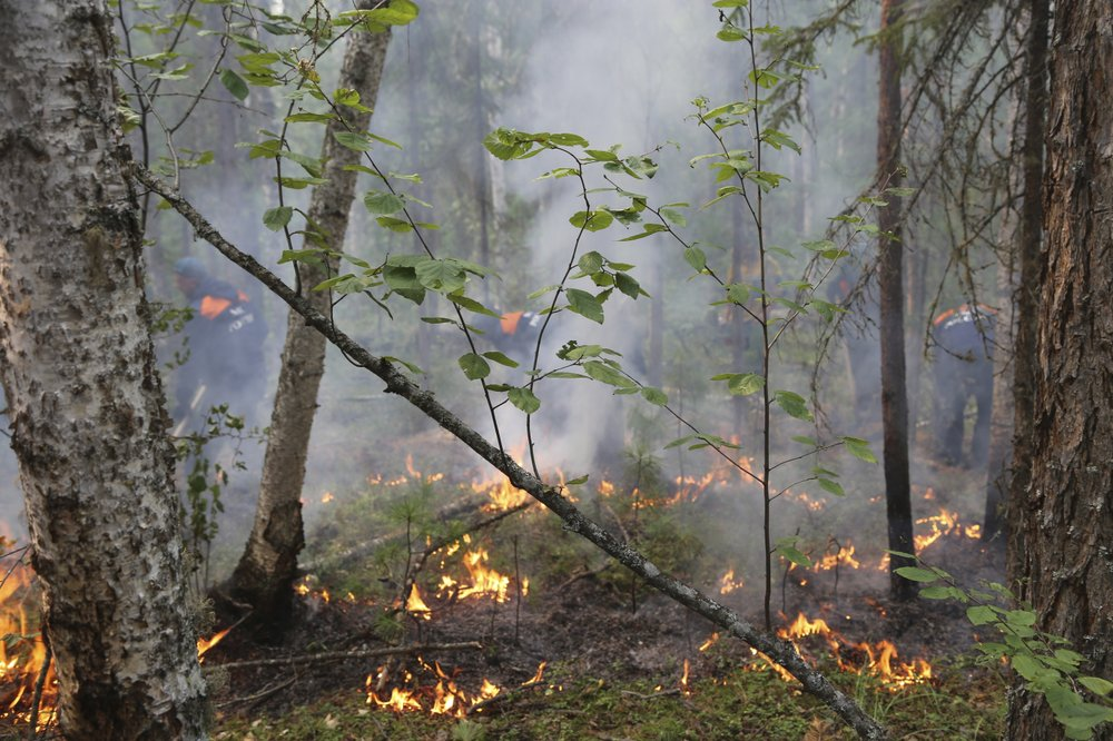 Russian military puts out wildfires on over 700,000 hectares in Siberia