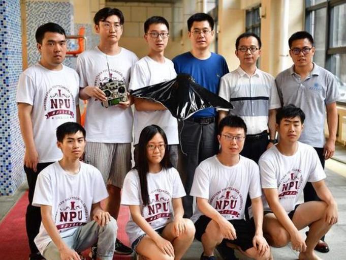 Chinese scientists develop devilfish-shaped soft robot