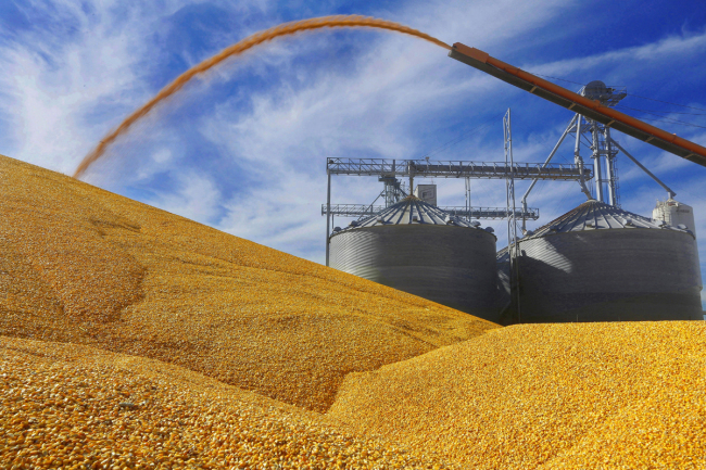 US accusations against China regarding purchase of agricultural products 'groundless': official