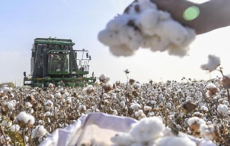 New cotton fertilization method developed in China