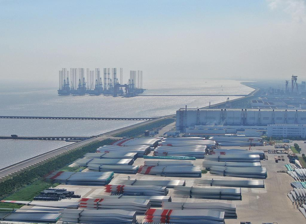 Shanghai's Lingang area to deepen opening-up