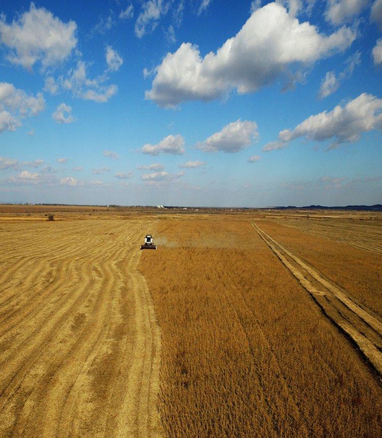 China multiplies farm import channels as trade war escalates