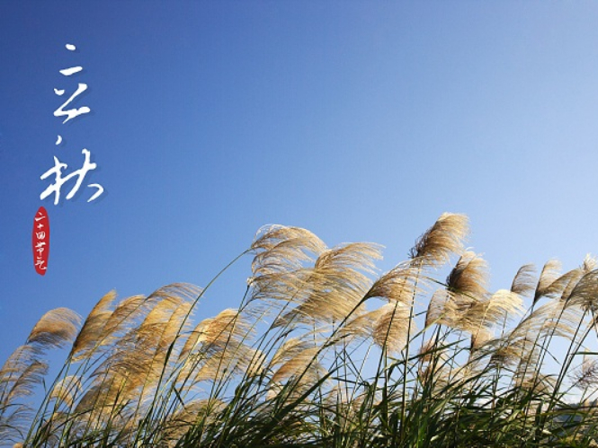 Start of Autumn: Traditional Chinese flower art of early autumn