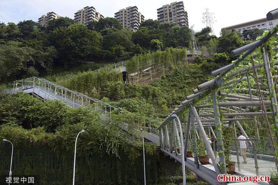 Chongqing opens escalators on mountain slope