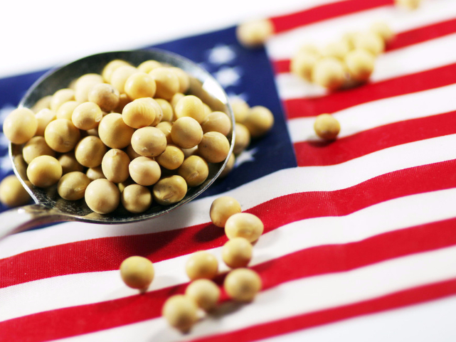 US responsible for its farmers' woes
