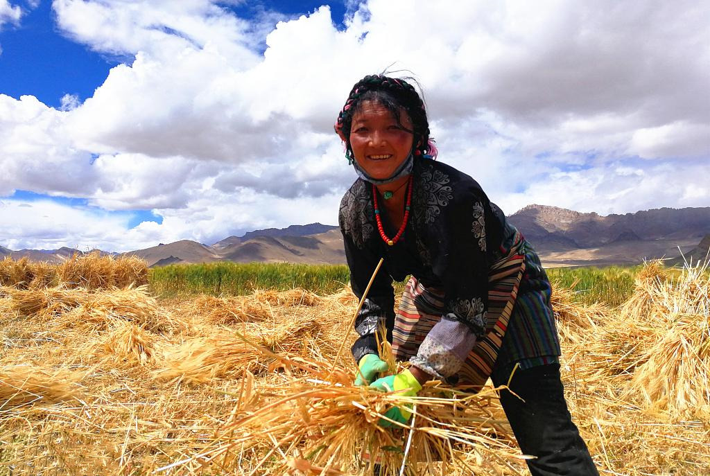 Income growth rate of Tibet's rural residents remains No 1 in China