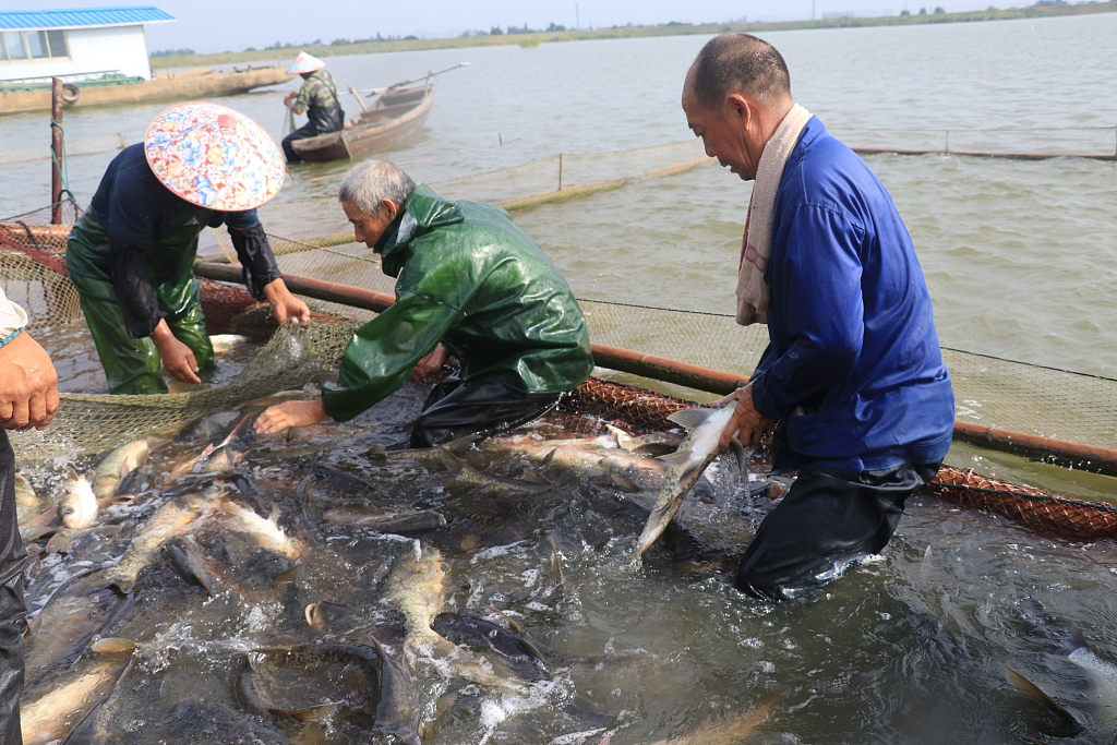 Annual fishing ban lifted in south China