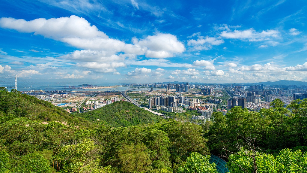 China's Shenzhen to be a 'global model city' by mid-century