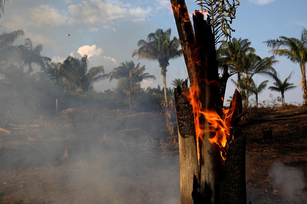 Brazilian president blames NGOs for starting fires in Amazon rainforest
