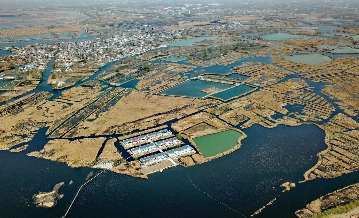 Bank of China approves 200 bln yuan of credit for Xiongan New Area projects
