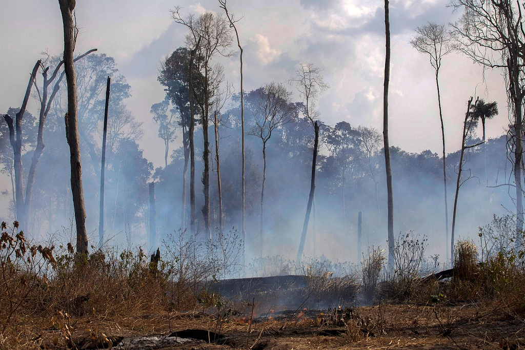 UK pledges £10 mn for fire-ravaged Amazon