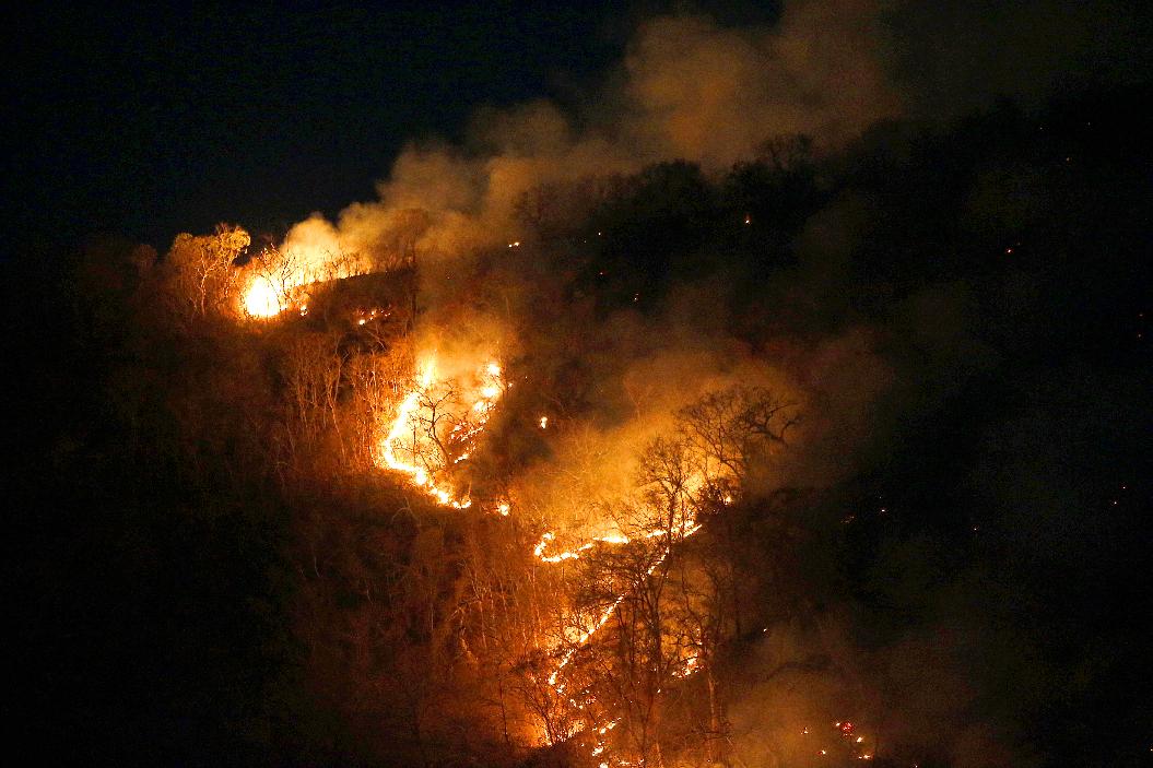 brazil blaze.jpg