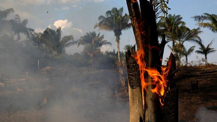 Brazil rejects G7 aid to fight Amazon wildfires