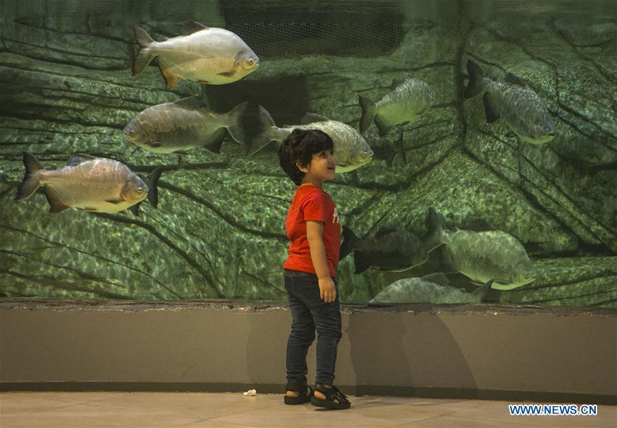 People visit Anzali Aquarium in Anzali Port, Iran