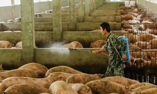 Chinese authorities rush to tame rising pork prices