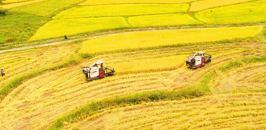 CPC regulation on rural work published