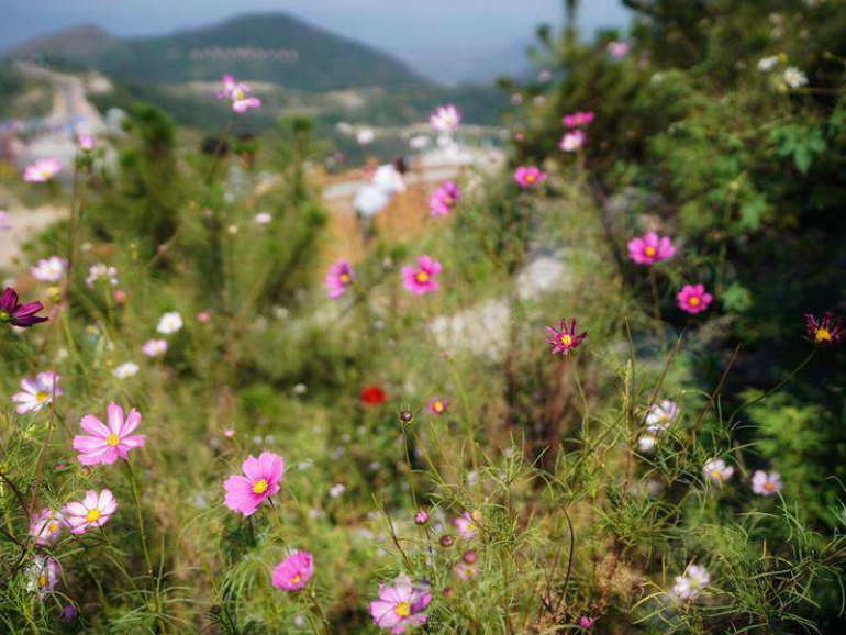 Scenery of Taihang Mountain in China's Hebei