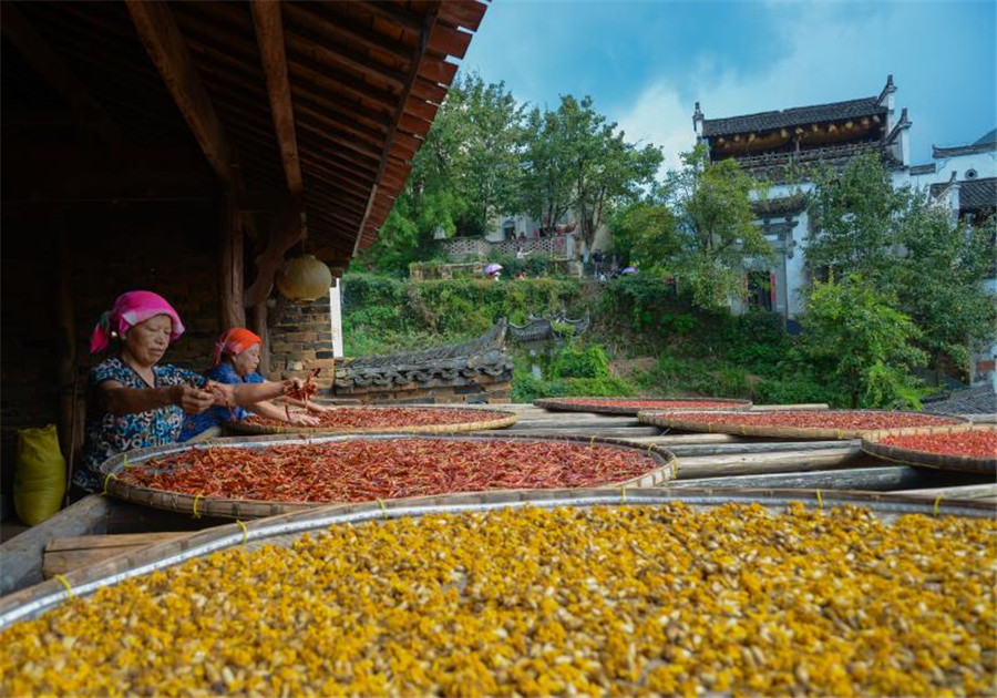 Jiangxi Huangling Food Gala to be held during Mid-Autumn Festival