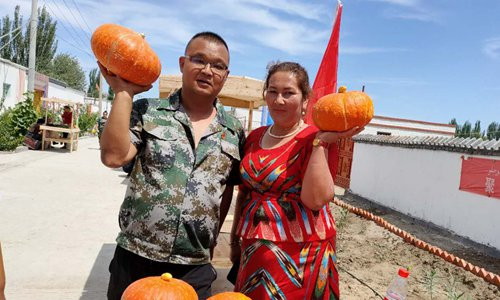 Working group takes measures to raise Xinjiang villagers' incomes