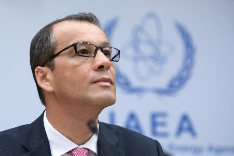 acting IAEA.jpg