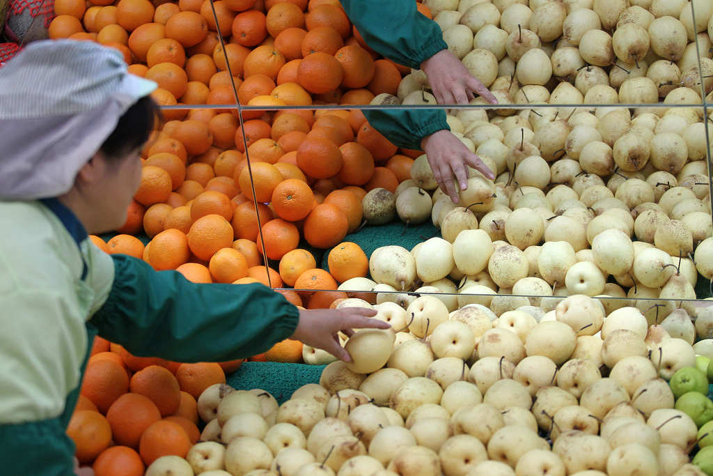 China's producer prices down 0.8 pct in August