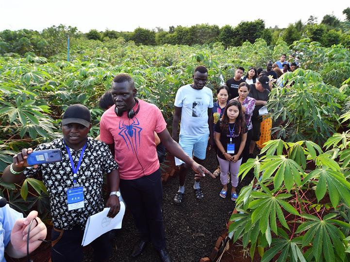 Foreigners learn planting skills in Hainan, S China