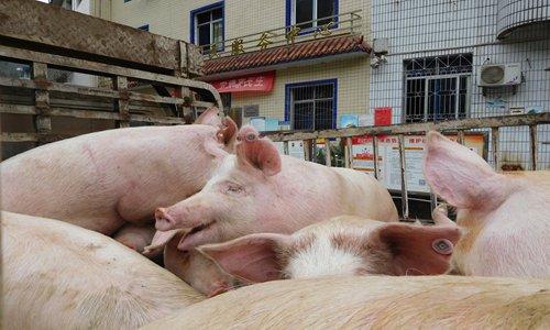 China splashes money on pig production
