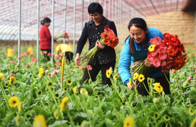 Targeted Poverty Alleviation: The China Story that Must Be Told