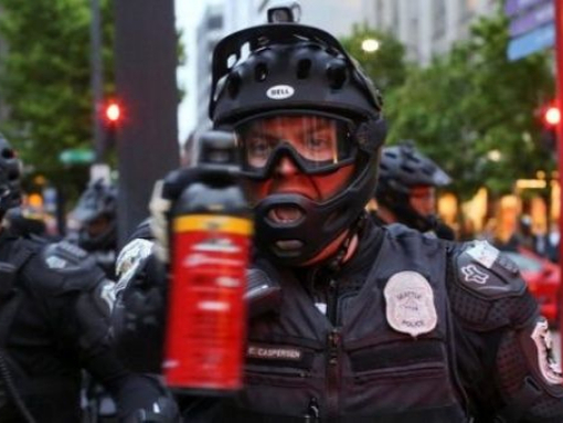 Do US lawmakers believe only their police should use pepper spray?