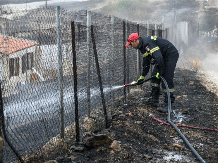 Firefighters try to put out wildfire in Saronida, Greece