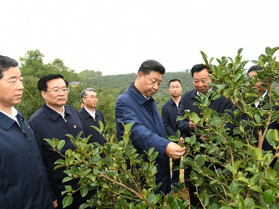 Xi inspects poverty alleviation work in central China
