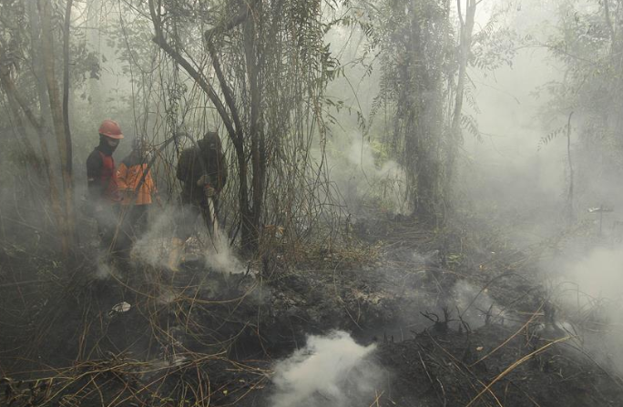 Firefighters extinguishing fire in Indonesia