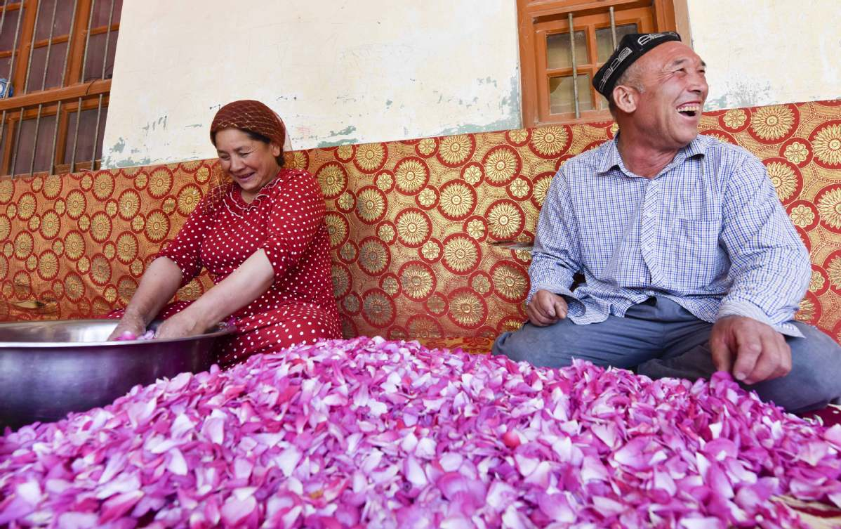 Xinjiang's fight against extremism, terrorism paying off